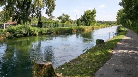 Am Herrenbachkanal fielen im vergangenen Jahr 46 große Bäume. Die Suche nach Standorten für Ersatzpflanzung gestaltet sich schwierig.