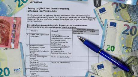 Das künftige Formular für die Vereinszuschüsse in Burgau. Es sind verschiedene Kriterien entwickelt worden, die jeweils mit Punktzahlen gewichtet werden.