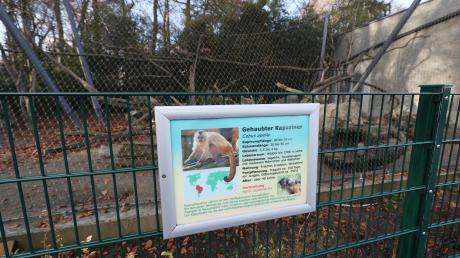 Wo heute die Kapuzineräffchen ihr Gehege haben, gab es nach Auskunft von Tina John vom Zoo-Marketing einmal einen zweiten Zugang in den Tierpark. Warum dieser geschlossen wurde, kann heute niemand mehr beantworten. Die Vermutung: Es gab Zeiten, in denen im Siebentischwald geparkt werden durfte.