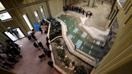 Besucher besichtigen bei der offiziellen Eröffnung am Montag das neue Elefantenhaus im Augsburger Zoo.