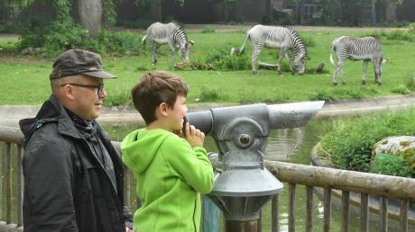 Endlich wieder Tiere sehen: Oliver Jung und sein Sohn Nikolaus freuen sich, dass der Augsburger Zoo wieder offen hat. Durchs Fernglas können sie Zebras, Nashörner, Giraffen und andere exotische Tiere aus nächster Nähe beobachten.