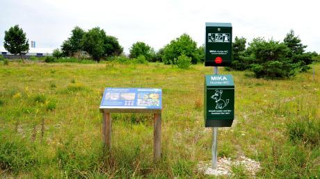 Seit dem 15. Mai 2020 steht die Flugplatzheide in Haunstetten als geschützter Landschaftsbestandteil unter Naturschutz. Das Gebiet beherbergt seltene Tier- und Pflanzenarten. Informationstafeln sollen Besucher der Heide für den Wert der Natur und die Einhaltung einiger Regeln sensibilisieren.