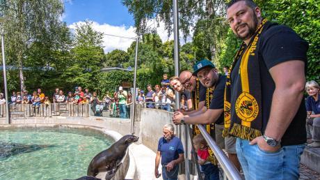 """Der Fanclub Borussia Augusta zu Besuch bei seinem Seebär-Patentier """"Schwalbenmeister"""" und seinem Spielkameraden. Der Verein hat die Patenschaft für das Tier für ein Jahr übernommen."""