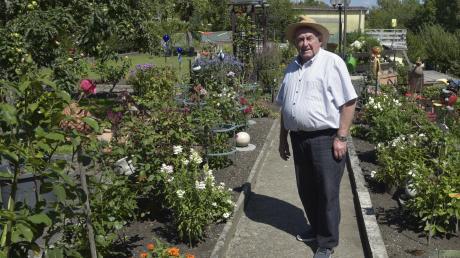Sein Kleingarten an der Wertach hat für Altstadtrat Dieter Benkard noch an Bedeutung gewonnen. Die Gartenarbeit erleichtert ihm seinen Rückzug aus der Kommunalpolitik.