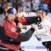 Augsburger Panther gegen EHC Red Bull München