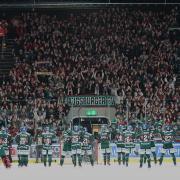 Noch ist offen, wann die Augsburger Panther wieder vor Zuschauer spielen - und wie viele Fans letztlich ins Stadion dürfen.