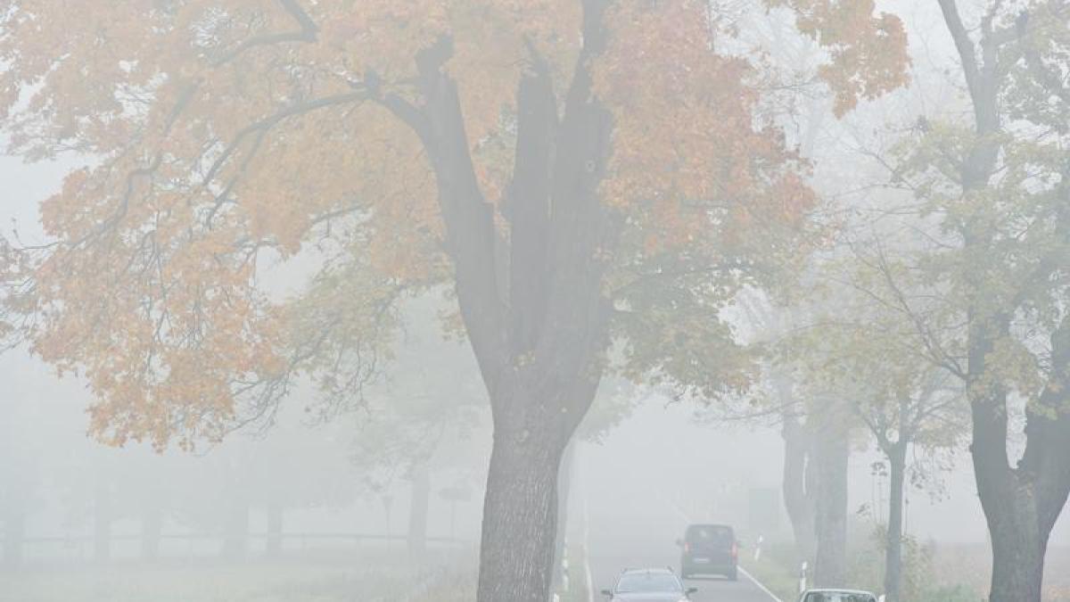 nebelschlussleuchte wann d rfen autofahrer die nebelschlussleuchte einschalten geld leben. Black Bedroom Furniture Sets. Home Design Ideas