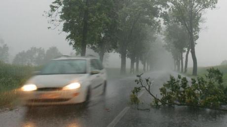 Regen, starker Wind, herabfallende Äste: Ein Sturm mit kräftigen Böen kann für Autofahrer ziemlich gefährlich werden. Foto:Patrick Pleul