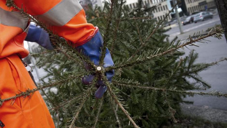 Weihnachtsbaume abholung augsburg