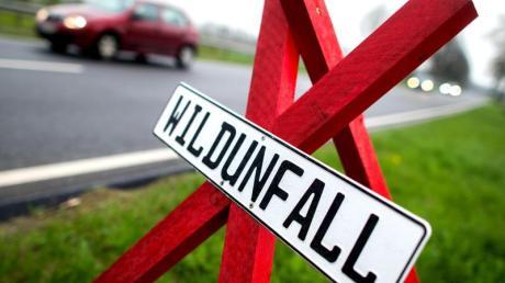 Nach einem Wildunfall sollten Autofahrer ein Warndreieck aufstellen. Foto: Hauke-Christian Dittrich/dpa