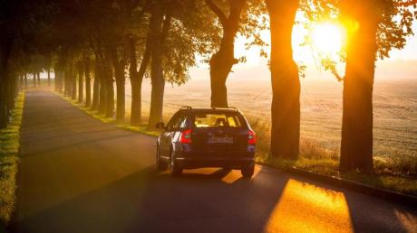 Wenn die Sonne tief steht und blendet, kann das für Autofahrer schnell gefährlich werden. Foto: Patrick Pleul/dpa-Zentralbild/dpa-tmn