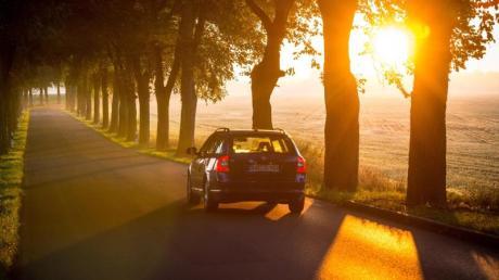 Wenn die Sonne tief steht und blendet, kann das für Autofahrer schnell gefährlich werden. So einen Fall gab es nun in Derching.