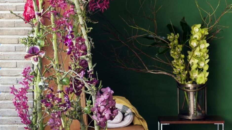 Immobilien Orchideen Mal Anders Als Pinker Deko Baum Furs