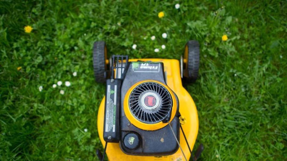 Top Mieten: Vermieter darf Kosten für Gartenpflege auf Mieter &TJ_57