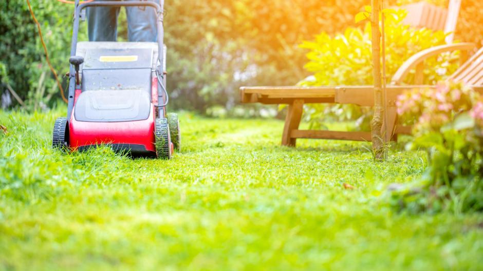 Gartengluck Im Fruhling Jetzt Vertikutieren Und Dungen Bauen