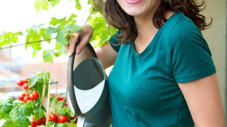 Balkon_Garten_%c2%a9_Production_Perig_-_Fotolia.com.jpg