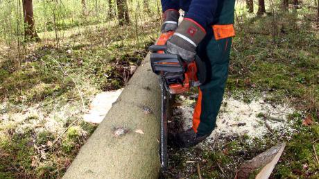 Wer im Wald tätig ist, sollte nicht nur Schutzausrüstung tragen, sondern möglichst auch den Umgang mit den Geräten erlernt haben.