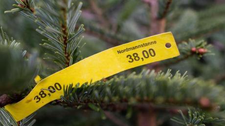 Der Weihnachtsbaumerzeuger-Verband erwartet trotz Corona auch 2020 ein traditionelles Verhalten beim Tannenbaumkauf. Die meisten Menschen erledigen diesen gewöhnlich um den vierten Advent.