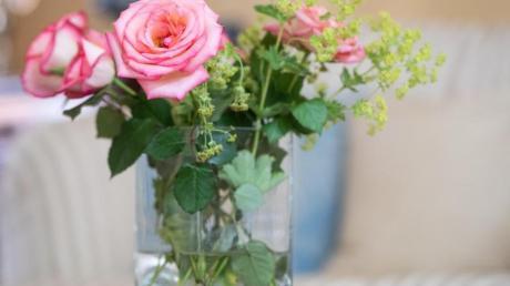 Viele Blumen hat ein 31-Jähriger seiner Lebensgefährtin ins Aichacher Gefängnis geschickt. Nur bei der Bezahlung haperte es.