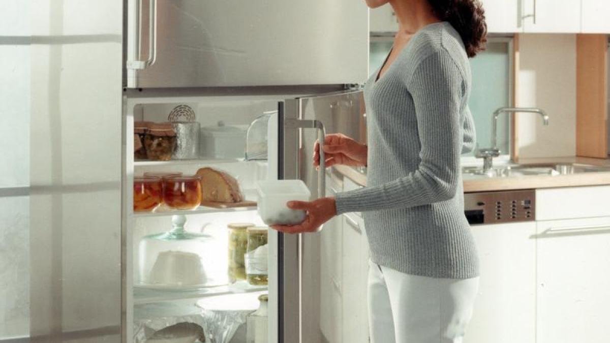 Kleiner Kühlschrank Verbrauch : Wohnen regelmäßiges kühlschrank abtauen senkt stromverbrauch