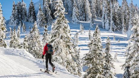 Im Augenblick haben Wintersportler an vielen Orten in Bayern – wie auf unserem Bild am Tegelberg im Allgäu – beste Pisten- und Loipenbedingungen.
