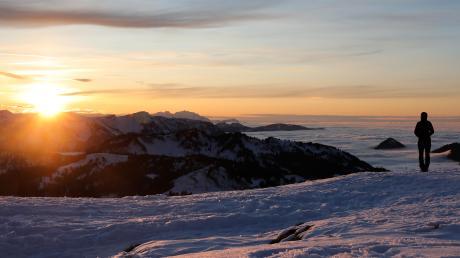 Die Schönheit und Vielfalt der Allgäuer Flora und Fauna zu erhalten, ist eines der Ziele des Zentrums Naturerlebnis Alpin.