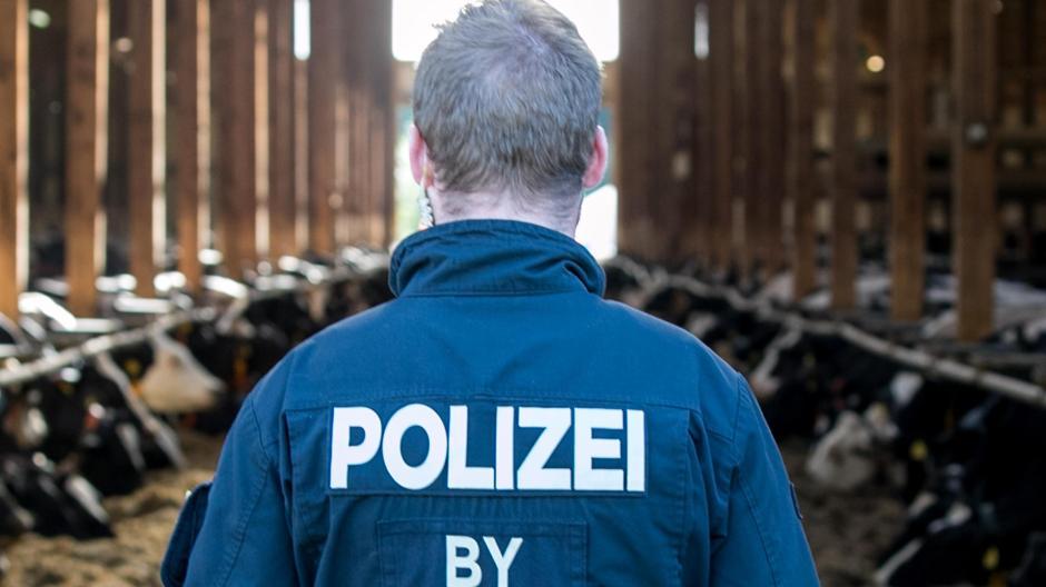 Mehrere Großbetriebe im Allgäu waren vor einem Jahr Schauplatz umfangreicher Polizeirazzien. Juristisch aufgearbeitet sind die Fälle noch immer nicht.