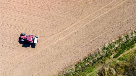 Viele Landwirte hadern mit der Politik, speziell den regierenden Unionsparteien.