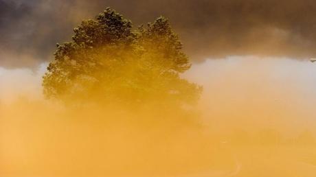 Sicht eingeschränkt: Ein Sandsturm fegt in Madison im US-Bundestaat Alabama über das Land. Foto: Jeronimo Nisa