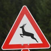 Warnschilder machen Autofahrer auf möglichen Wildwechsel aufmerksam.