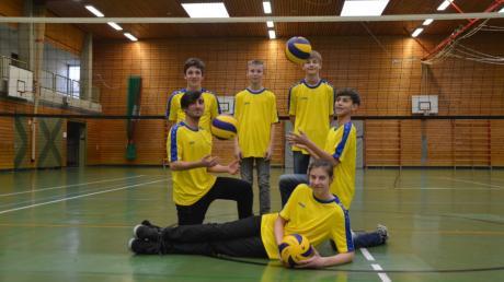 Das Volleyballteam der Grund- und Mittelschule Wittislingen hat zum zweiten Mal in Folge die Bayerische Meisterschaft gewonnen.