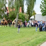 UNT_Schulfest GS_2019-05-17_BiGa-017.JPG