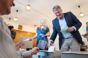 Europawahl - Stimmabgabe Meuthen