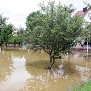 AN_Hochwasser Gulden Fritz.jpg