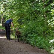 Elfjährige in München vergewaltigt
