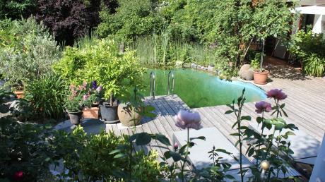 Ein kleiner Schwimmteich, Sonnenliegeplätze, die Terrasse versteckt hinter wildem Wein, alles umrahmt von Zitronen-, Orangen- und Olivenbäumen - das ist Sommer in Thannhausen.