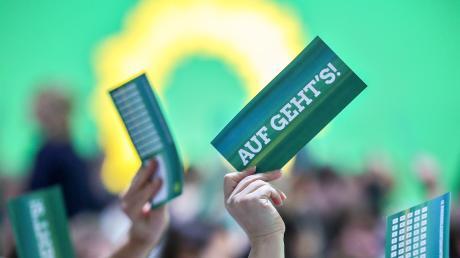 Die Grünen werden 40 Jahre alt. Einst galten sie als revolutionäre Antiparteien-Partei, doch mittlerweile sind sie im Establishment angekommen.