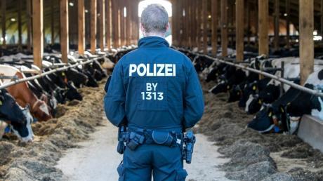 Bad Grönenbach Bauernhof Polizei