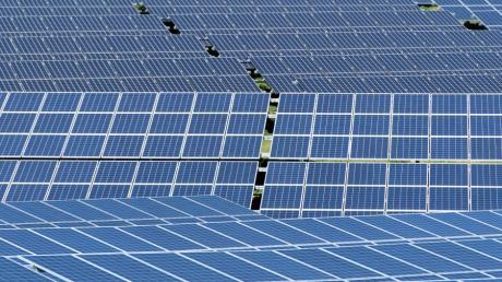 Für die Solarbranche in Deutschland ist 2019 bislang ein gutes Jahr.
