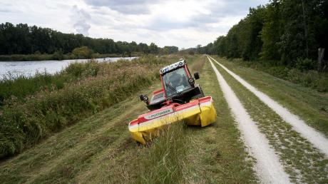 Die Firma LEW Wasserkraft führt in den nächsten Wochen wieder Mäharbeiten an der Donau durch.