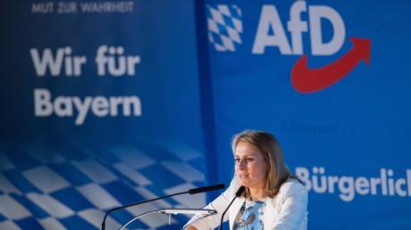 Landesparteitag der bayerischen AfD