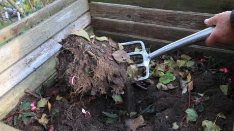 In der Regel dauert es zwischen sechs und zwölf Monaten bis aus Abfällen und Grünzeug fertiger Kompost wird.