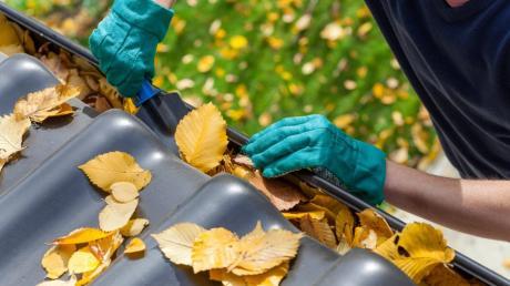 Für einen Rentner aus Unterliezheim werden Handwerksarbeiten zu einer teuren Angelegenheit.