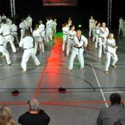 Taekwondo TVL003.jpg