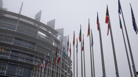 Die Flaggen der Mitgliedstaaten vor dem EU-Parlament in Straßburg. Foto: Philipp von Ditfurth/dpa