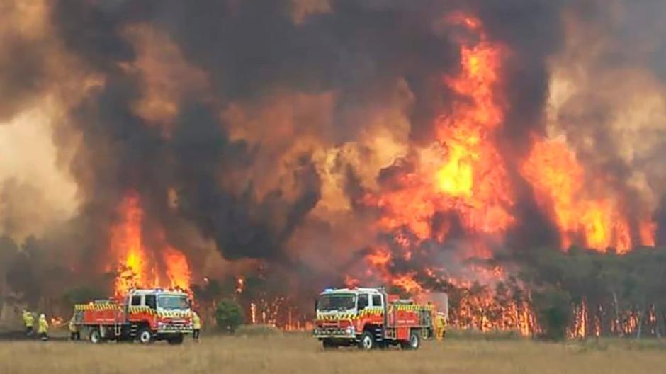 Bildergebnis für buschfeuer australien
