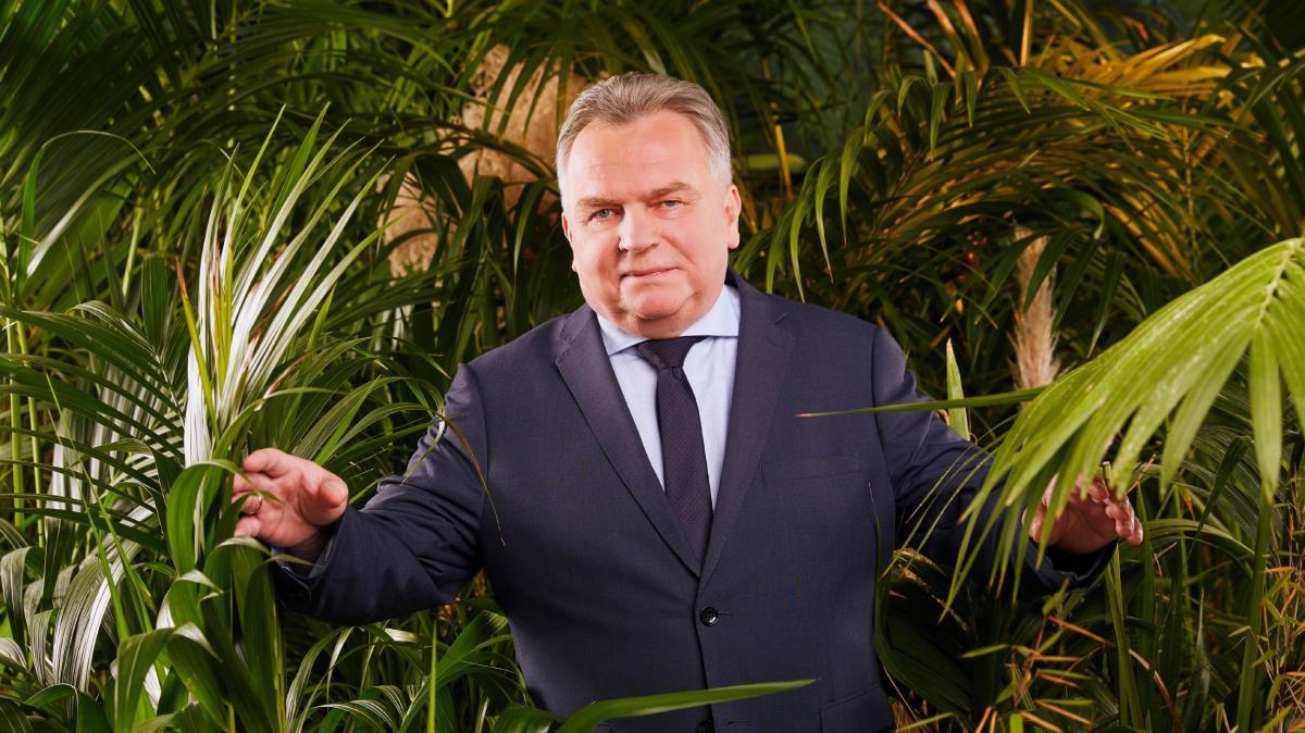 Das Dschungelcamp 2020 Live Im Tv Und Stream