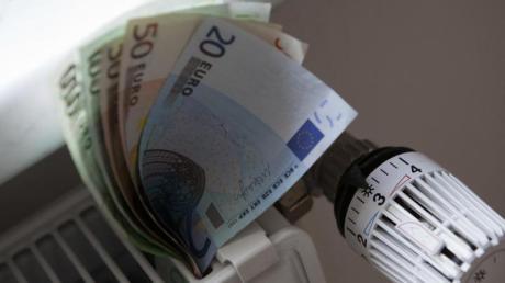 Private Haushalte müssen immer mehr Geld für Energiekosten aufbringen. Wie lassen sich Strom und Wärme sparen? Bürger aus dem Raum Babenhausen können sich nun Tipps zu diesem Thema holen.