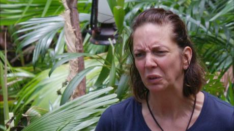 Dschungelcamp 2020: Auch in Folge 8, die heute am 17.1.20 läuft, muss Danni wieder zur Dschungelprüfung - gemeinsam mit Elena. Die Kandidaten zoffen sich weiter. Hier die Vorschau.