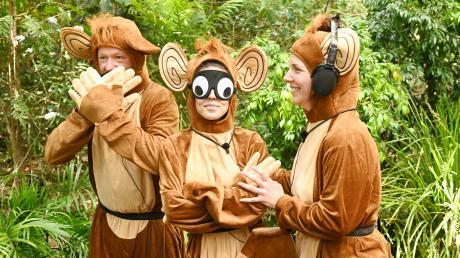 Dschungelcamp 2020 läuft heute mit dem großen Wiedersehen live im TV und Stream. Hier die Infos zur Übertragung.